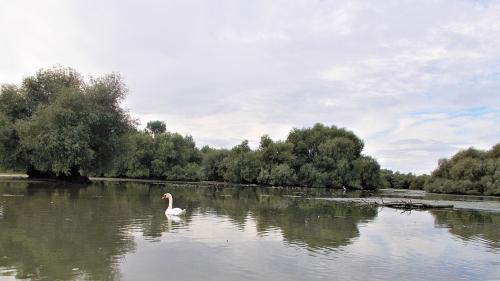 Un consorțiu va investi 1,3 miliarde de dolari în sectorul agricol din regiunea Mării Negre