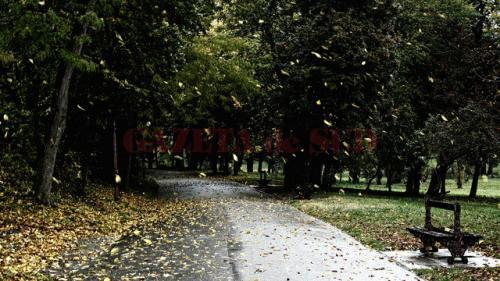 Prognoza METEO pentru 8, 9 și 10 noiembrie: Ploi în toată țara