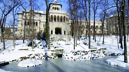 Burlanele și jgheaburile de la Palatul Cotroceni, dezghețate iarna cu aparatură de 57.000 de euro