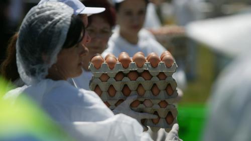 Ce spune ministrul Daea despre scumpirea ouălor