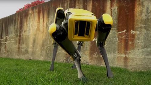 VIDEO - Un nou robot care se mișcă precum un cățel, prezentat într-un scurt filmuleț de Boston Dynamics