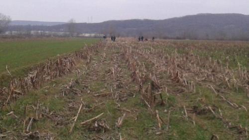 Caz dramatic în Vaslui! O femeie a stat 6 ore pe un câmp, aprope dezbrăcată, după ce a fost luată la ocazie de un vasluian