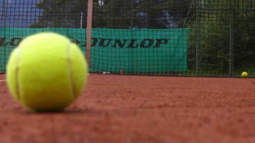 Finul prezidențial VECERDEA pierde alegerile la Federația de Tenis