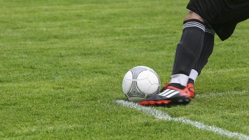 Mircea Sandu vrea un fost fotbalist la sefia FRF