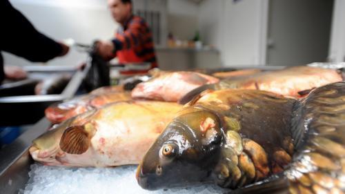 Peştele, pe masa de Sfăntul Nicolae