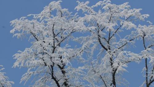 Prognoza METEO pentru 13, 14 și 15 decembrie: Cer variabil