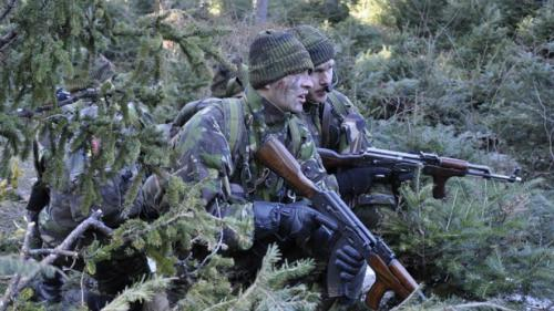 Descoperire macrabră într-o pădure din Braşov, în timpul unui exerciţiu militar