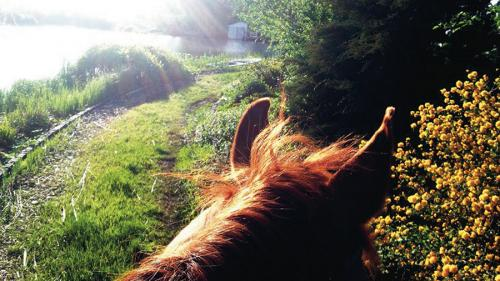 România văzută din șaua calului