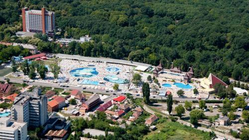 Staţiuni balneare din România -Băile Felix