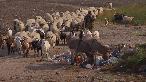 România, înecată în gropi de gunoi clandestine