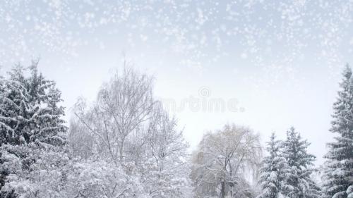 Prognoza METEO pentru 20, 21 și 22 februarie: Ninsori în toată țara