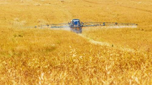 China, important cumparator de terenuri agricole în străinătate