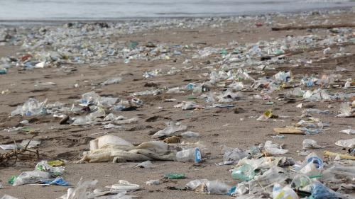 O expediție oceanică cu echipaj integra feminin va studia impactul poluării cu plastic