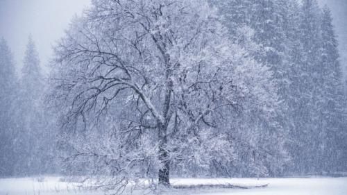 Prognoza METEO pentru 22, 23 și 24 martie: Ger, ninsori şi polei