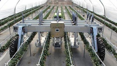 Roboții de ultimă generație vor înlocui fermierii la muncile câmpului