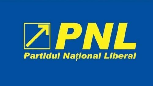 """PNL somează Guvernul să renunţe la proiectul de lege privind Strategia """"România 2040"""""""