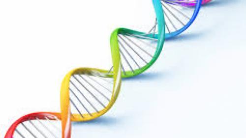 15 lucruri surprinzătoare despre ADN