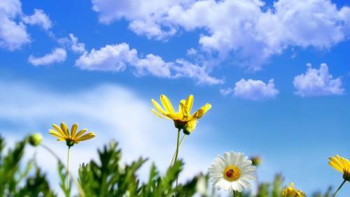 Prognoza METEO pentru 26, 27 și 28 aprilie: Vreme caldă