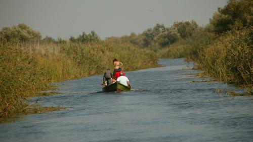 Delta Dunării face foamea pe un miliard de euro