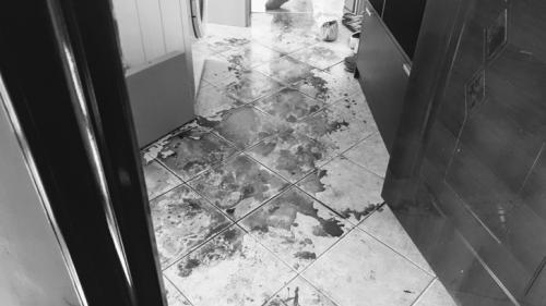 Crimă teribilă în Timișoara. Un bărbat și-a ucis soția, apoi a încercat să se sinucidă
