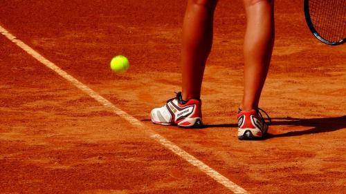 13 persoane, arestate în Belgia pentru trucarea unor meciuri de tenis