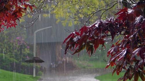 Prognoza METEO pentru 10, 11, 12 şi 13 iulie: Precipitaţii