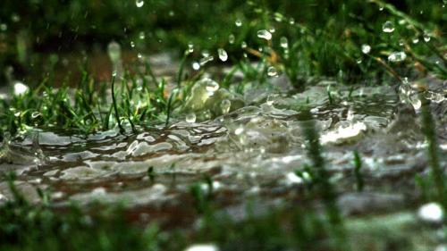 Prognoza METEO pentru 17, 18, 19 şi 20 iulie: Precipitaţii