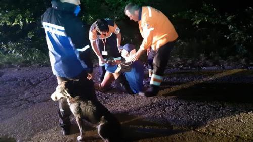 Câinele care a salvat un rănit pe munte a fost adoptat
