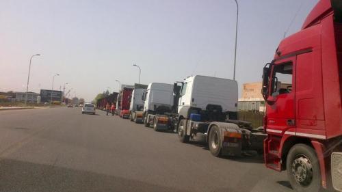 Traficul rutier de mare tonaj, restricţionat în zona Viziru-Mihai Bravu din cauza pestei porcine africane