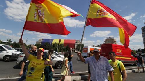 GALERIE FOTO - Protestul diasporei