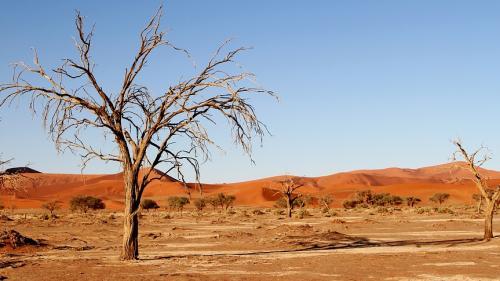 ÎNCĂLZIRE GLOBALĂ Vremea va fi anormal de călduroasă în următorii patru ani, prognozează specialiştii