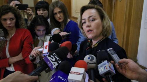Raeţchi (PNL) îi cere ministrului de Interne să nu blocheze audierea ei în Comisia de apărare din Camera Deputaţilor