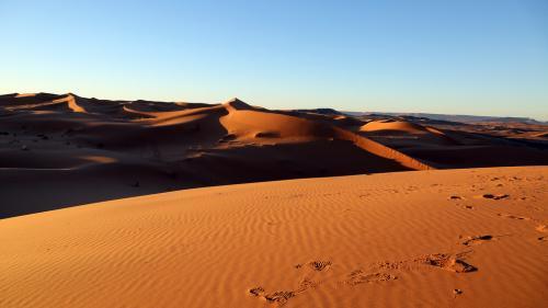 Oamenii de ştiinţă au anunţat un plan incredibil pentru a aduce ploaia în deşertul Sahara