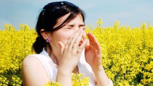 Ochii roşii şi strănutul frecvent - simptomele alergiei la ambrozie