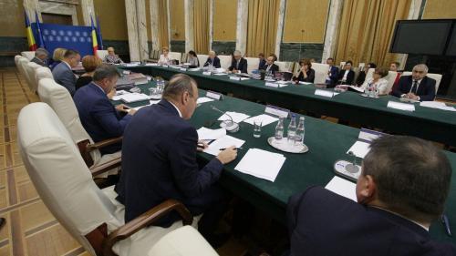 Remaniere: aproape jumătate din Cabinetul Dăncilă, pe lista neagră