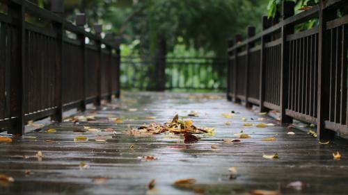 Prognoza METEO pentru 26, 27, 28 şi 29 septembrie: Ploi slabe