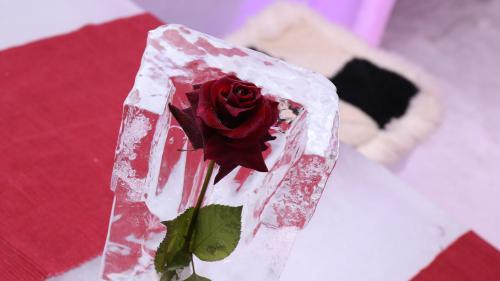 Frozen Love, tema hotelului de gheață