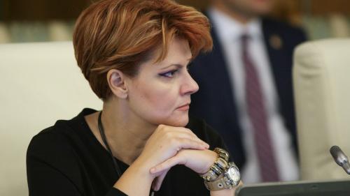 Olguţa Vasilescu, după adoptarea în comisie a raportului la legea pensiilor: Este o lege bună, aplicabilă