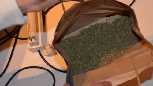 Percheziții la Constanța! Mii de pachete de ţigări de contrabandă confiscate de Garda de Coastă