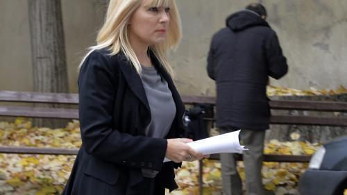 ANAF cere curator fiscal pentru administrarea averii Elenei Udrea