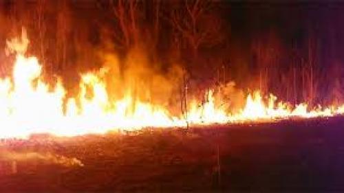 Argeş: Incendiu de vegetaţie uscată extins pe trei dealuri de lângă oraşul Ştefăneşti