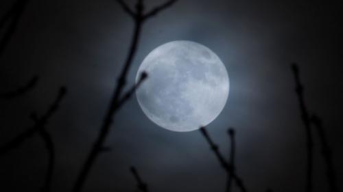 Fenomen astrologic unic în România: Luna de Zăpadă, cea mai mare și mai strălucitoare lună plină a anului