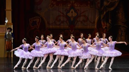 Producţii de succes la Opera din Bucureşti