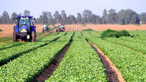 Comisia Europeană majorează sprijinul naţional acordat fermierilor până la 25.000 de euro