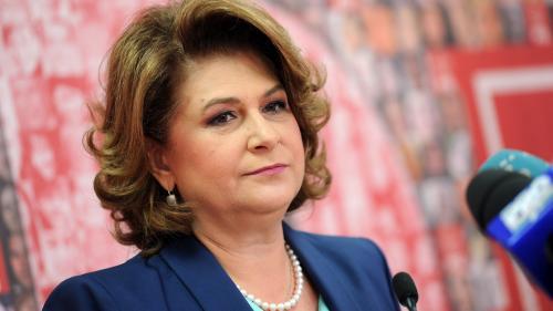 Rovana Plumb: România va miza pe dezvoltarea IMM-urilor şi pe sprijinirea eficienţei energetice, în următoarea perioadă de programare
