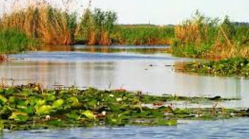 Tulcea: Bolero, prima navă de croazieră fluvială care a ajuns în Delta Dunării