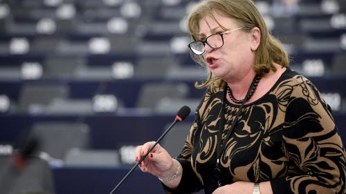 Norica Nicolai susţine că referendumul pe justiție nu poate fi validat