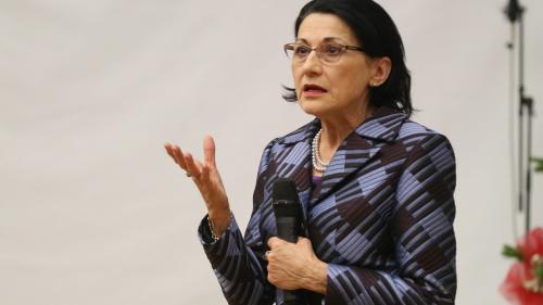 Scandalul școlilor profesionale, explicat de ministrul Educației, Ecaterina Andronescu