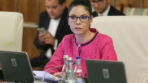 Ana Birchall: Ne propunem să avansăm negocierile pentru un acord UE - SUA pe e-evidence