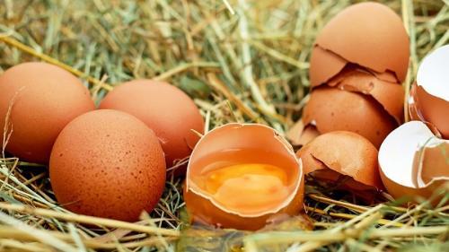 Diete sănătoase. Nutriţioniştii ne recomandă să consumăm ouăle cu tot cu coajă